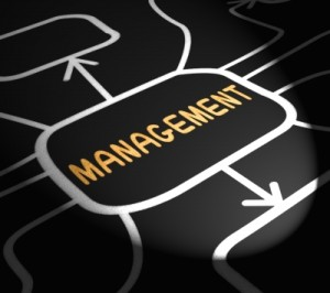 Consulting and Managing